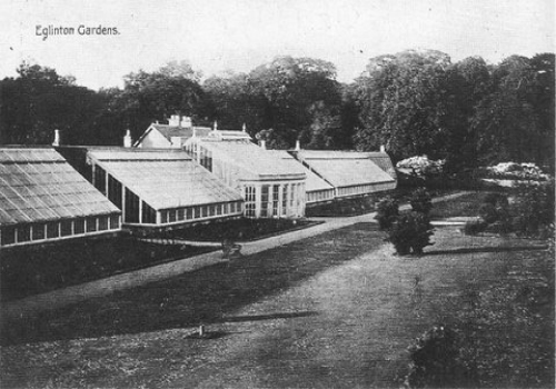 Garden Centre: The Greenhouses That Once Stood In Eglinton Estate